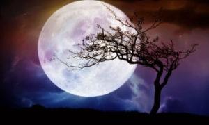 Присушка на иглу в полную Луну
