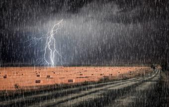 Дождь, губящий урожай