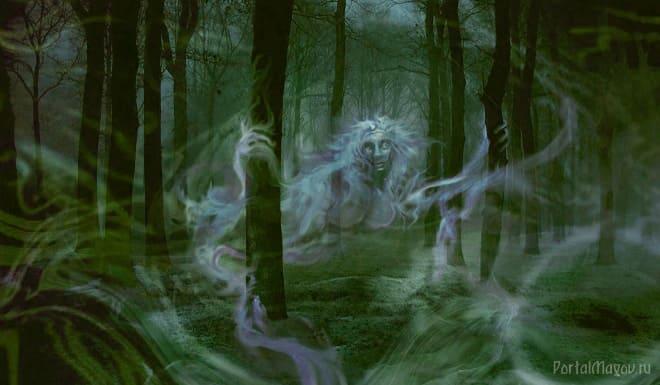Злой дух лесной чащи
